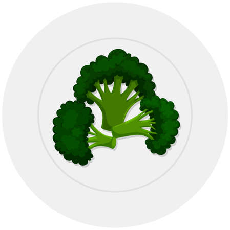 brocolli: Boiled brocolli on plate illustration Illustration