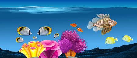underwater scene: Underwater scene with fish and coral reef illustration Illustration