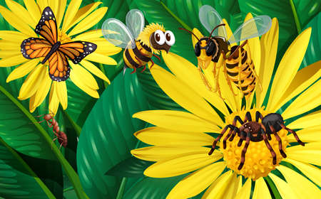 butterfly background: Different types of bugs flying around yellow flowers illustration