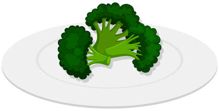 plate: Boiled brocolli on white plate illustration Illustration