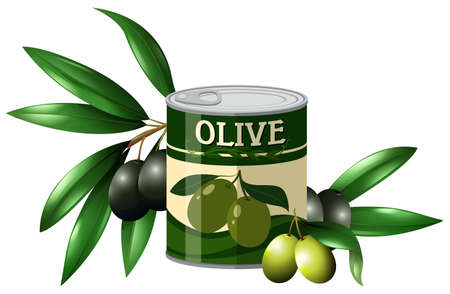 tin packaging: Fresh olive and olive in can illustration Illustration