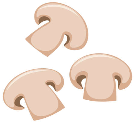 brown: Mushroom slices on white background illustration