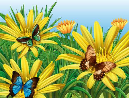 butterfly background: Butterflies in the garden illustration