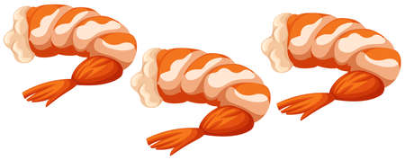 shrimp cocktail: Three cooked shrimps on white background illustration