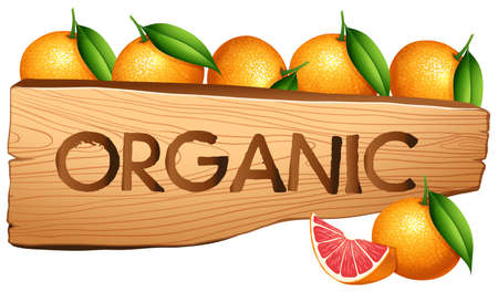 Oranages and organic sign illustration