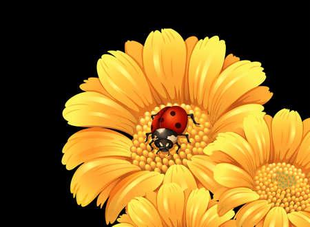 calendula: Ladybug on yellow flower illustration