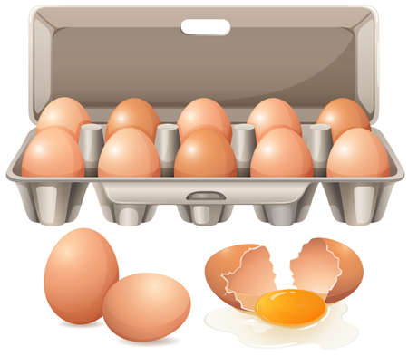 Carton of eggs and raw egg yolk illustration