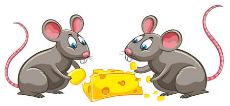 Two rats eating cheese illustration