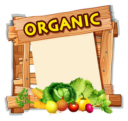 Organic sign with many vegetables illustration