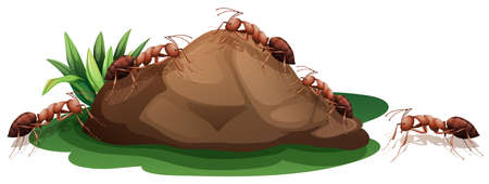 Red ants crawling up the rock illustration