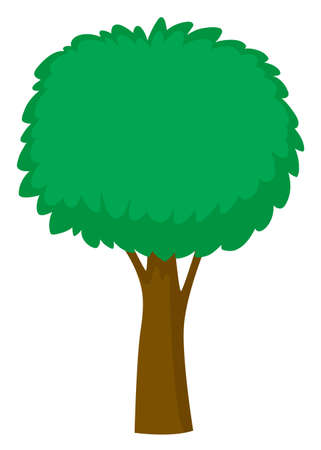 tropical: Green tree on white background illustration