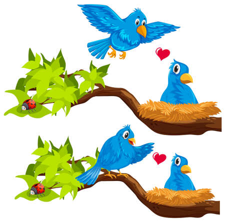 white background: Blue birds in the nest illustration