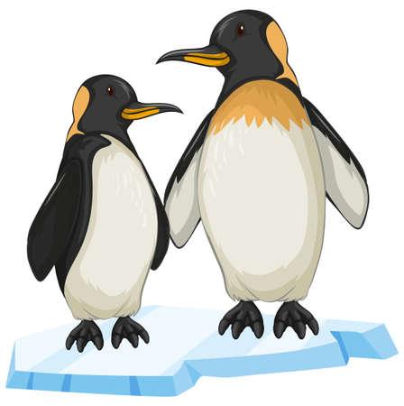 Twee pinguïn op ijs illustratie Stock Illustratie