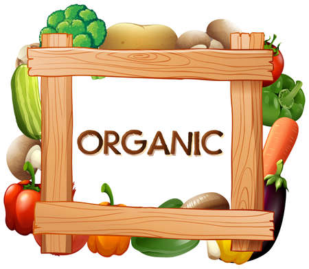food: Frame template with fresh vegetables illustration Illustration