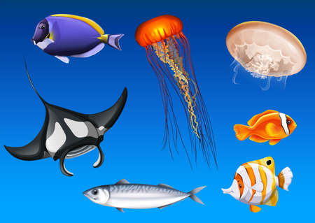 Different kinds of sea animals underwater illustration