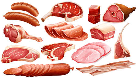 Different types of meat products illustration Illustration