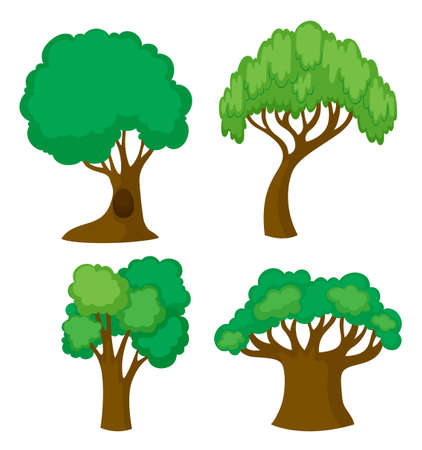 Four different shapes of trees illustration Illustration