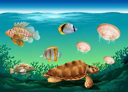 Underwater scene with many sea animals illustration Illustration