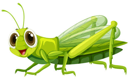 Grasshopper with happy face illustration
