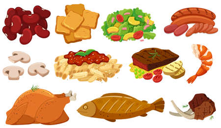Different types of food and ingredients illustration