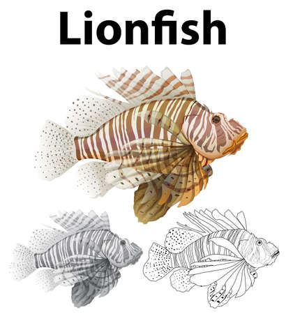 Doodle character for lionfish illustration