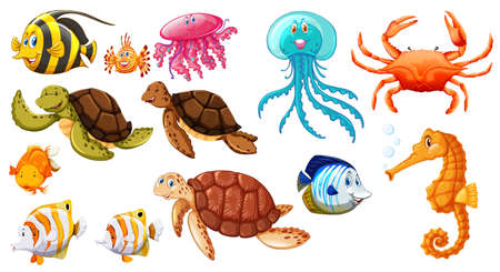 Different kinds of sea animals illustration Stock Vector - 77514809