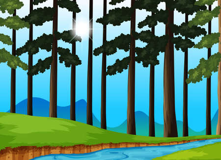 tropical: Trees and river in the forest illustration