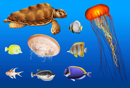 Different types of sea animals in ocean illustration