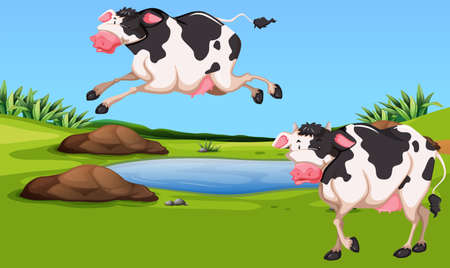 Two cows in the farm illustration Illustration