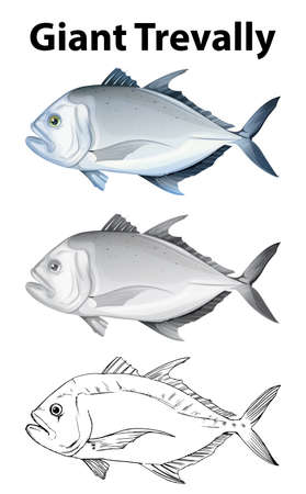 tropical: Doodle character for giant trevally illustration