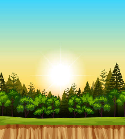 tropical: Forest scene with trees on the cliff illustration Illustration