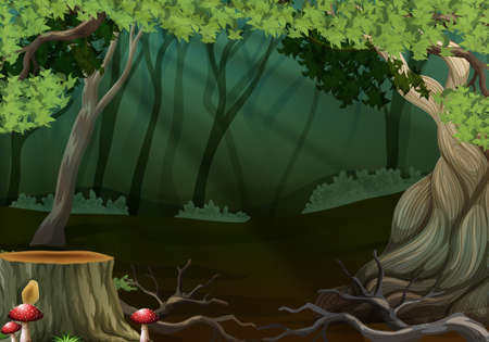 tropical: Dark forest with stump tree illustration Illustration