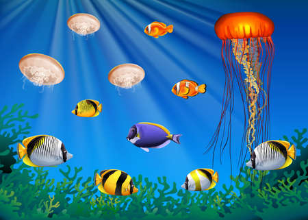 tropical: Sea animals swimming under the sea illustration
