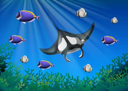 tropical: Stingray and many fish under the ocean illustration