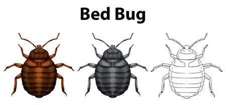 Bug bug in tre schizzi illustrazione