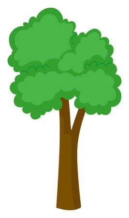 Tall tree on white background illustration Illustration