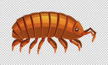 brown: Lice on transparent background illustration Illustration