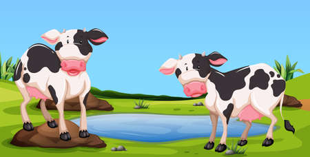 Two cows standing in farmyard illustration