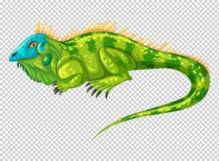 Wild lizard on transparent background illustration Illustration