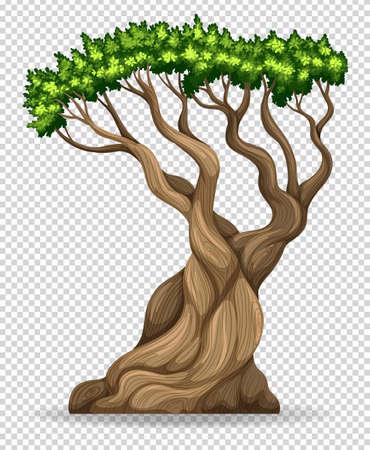 透明な背景イラストを大きな木