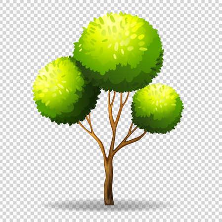 Gree tree on transparent background illustration Illustration