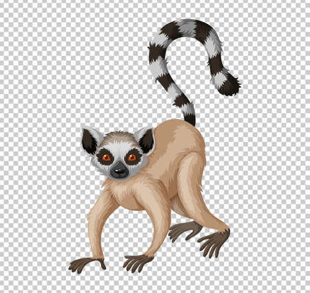 Cute lemur on transparent background illustration