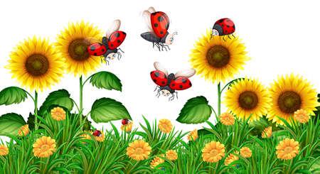 Ladybugs flying in sunflower garden illustration