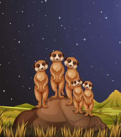 Meerkats standing on rocks at night illustration 版權商用圖片 - 80089348