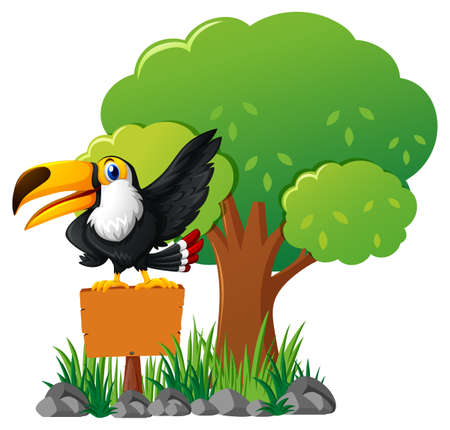 Toucan bird on wooden sign in garden illustration
