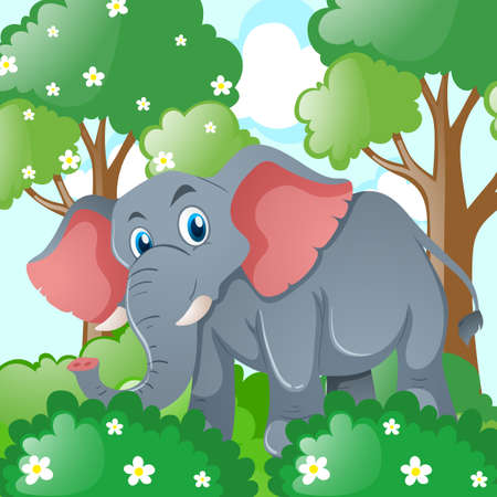 tropical: Gray elephant in the jungle illustration