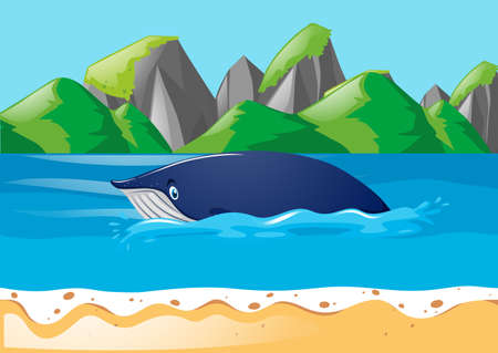 Blue whale swimming in ocean illustration Illustration