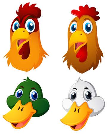 Hoofden van kippen en eendenillustratie