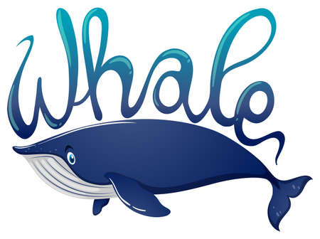 Word for whale and blue whale on white background illustration