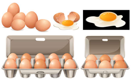 Raw eggs in different packages illustration